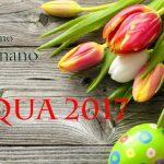 Banner Pasqua 2017
