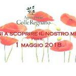 Banner Primo Maggio 2018