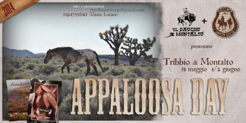 Appaloosa-Day