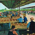 Borgo d'Ale, mercato delle pesche