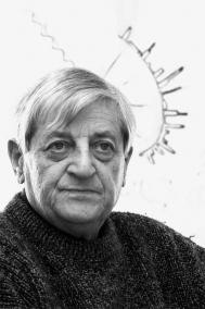 Baruchello Gianfranco